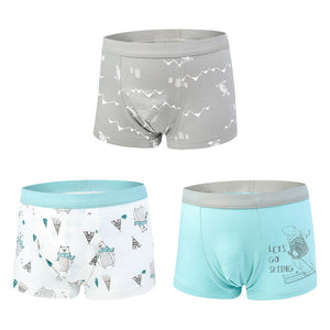 Outdoor Fun, Toddler Briefs (Set of 6)