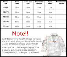Load image into Gallery viewer, Handsome Knit Sweater (Various Styles/Colors)