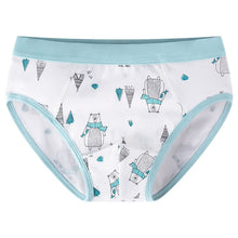 Load image into Gallery viewer, Undies! Winter! (Set of 3)