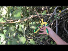 Load and play video in Gallery viewer, DualKut Mk. VI - Ratchet Secateurs - Daisy