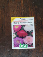 Aster Powderpuff Bouquet Seed