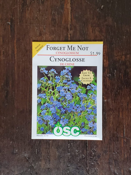 Forget Me Not Cynoglossum Seed