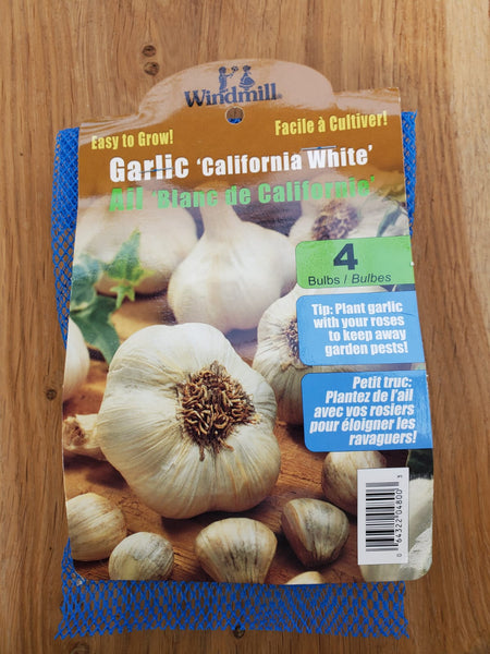 Garlic California White Bulb