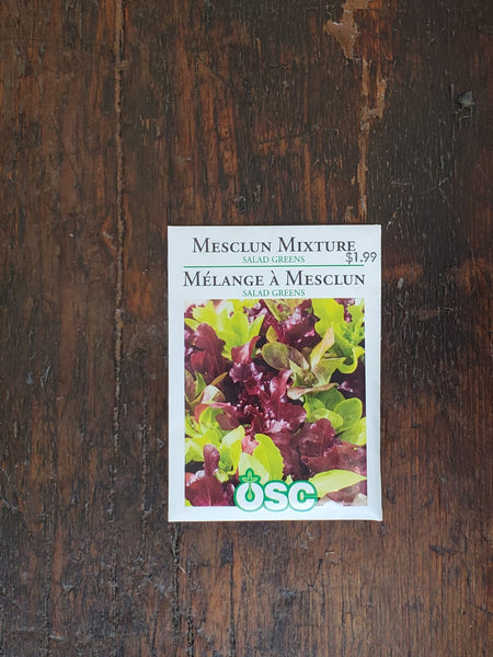 Lettuce Mesclun Mix Salad Greens Seed
