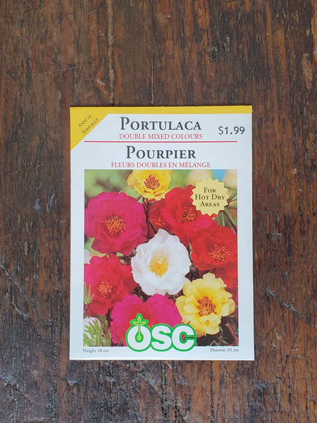 Portulaca Double Mixed Colours Seed