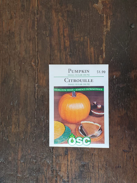 Pumpkin Small Sugar or Pie Seed
