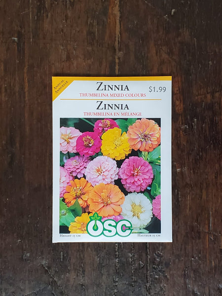 Zinnia Thumbelina Mixed Colours Seed