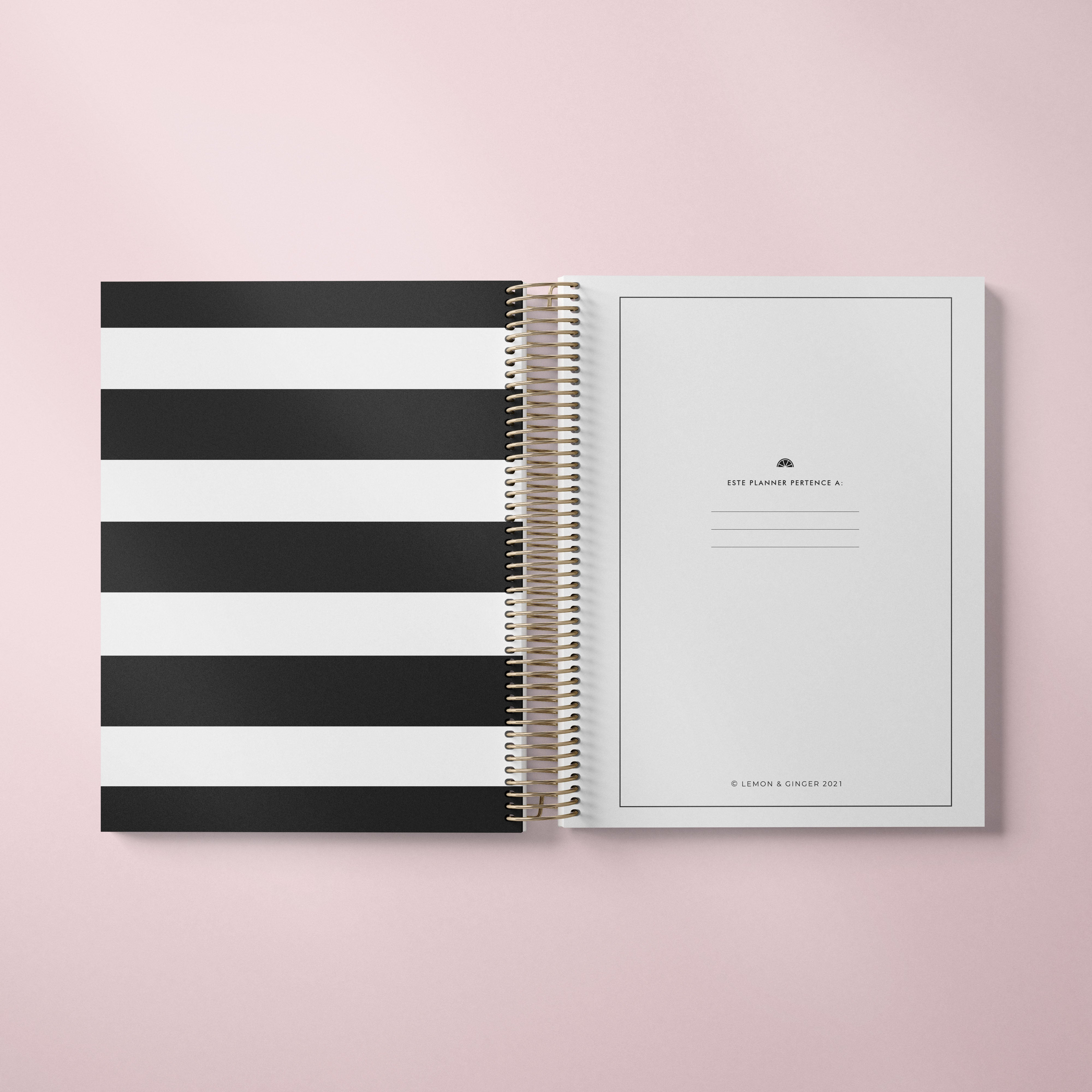 DAILY PLANNER * HANDMADE DOTS WHITE * UNDATED AGENDA | PLANNER DIÁRIO PERPÉTUO