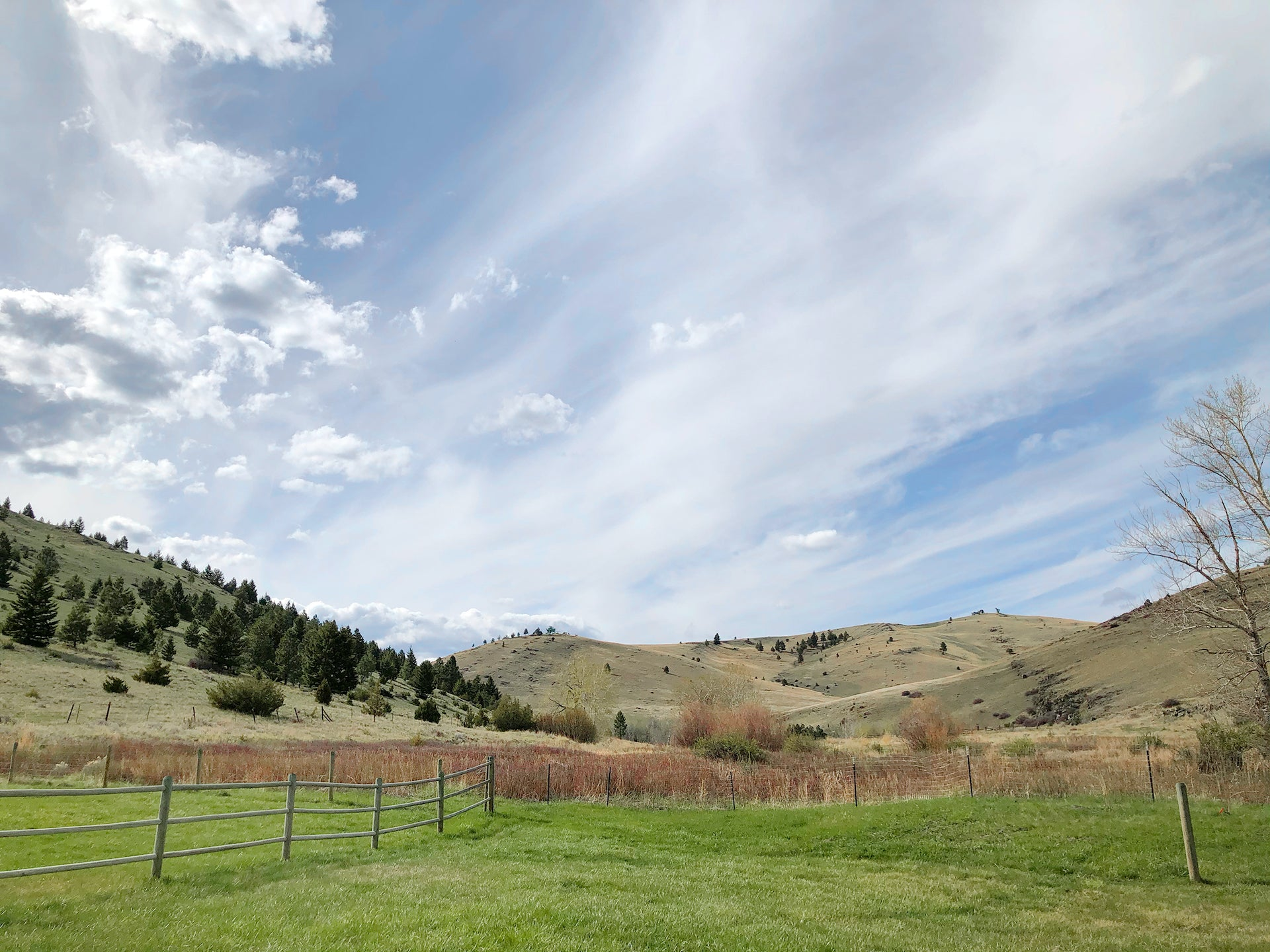 The view from Jung's new home and studio in Montana, a property set along the Blue Cloud Creek. Photo © Mimi Jung