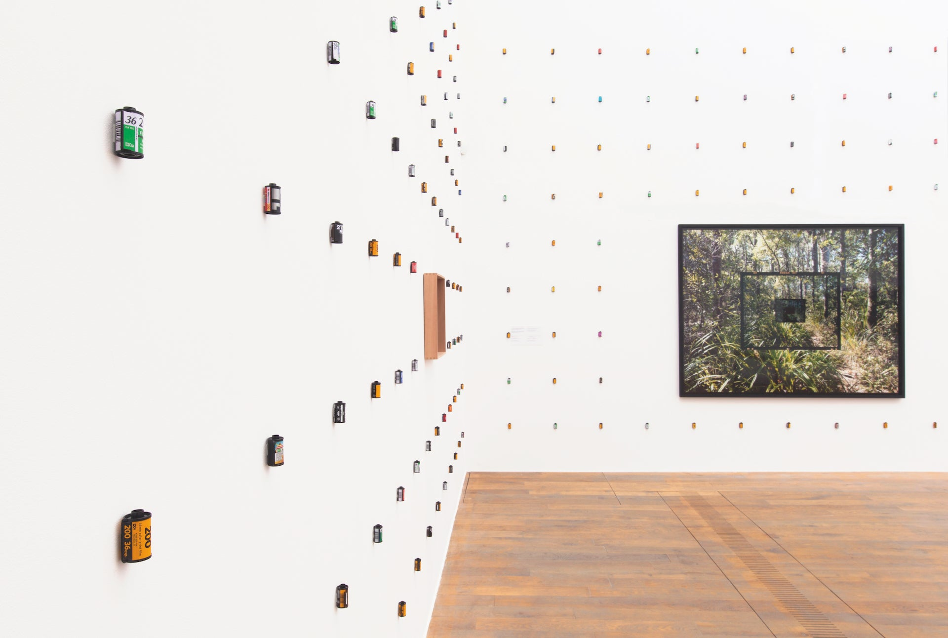 Exhibition view of Mladen Bizumic: Kodak Employed 140, 000 People. Instagram, curated by Adam Carr and presented at MOSTYN in Wales in 2016-17. The project explored the global rise, domination, and downfall of the Eastman Kodak Company, a lens through which to see the broader implications of the societal shift from analog to digital photography and social media platforms. Photo © Dewi Lloyd; courtesy of the artist and Georg Kargl Fine Arts, Vienna