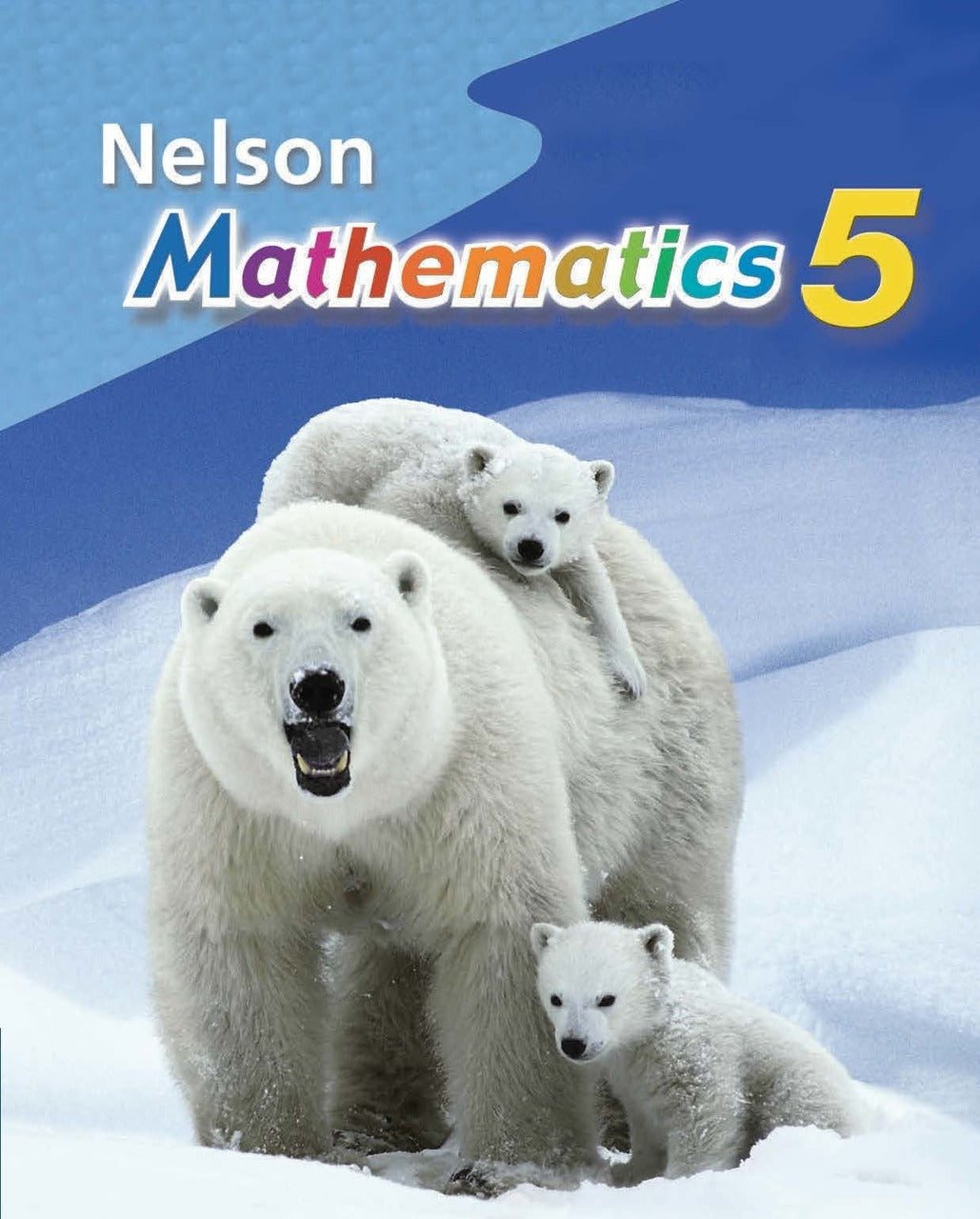 Nelson Mathematics 5 Student Book: Student Text & Online Student Text PDFs