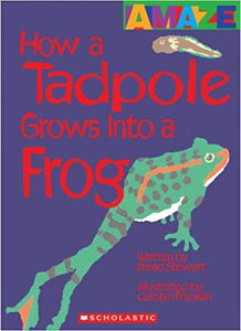 Amaze: How A Tadpole Grows Into A Frog