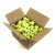 Green Dot Mini Tennis Balls. 10 Dozen Balls in a carton