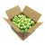 Green Mini Tennis Balls. 10 dozen Zsig Link Green balls in a carton.