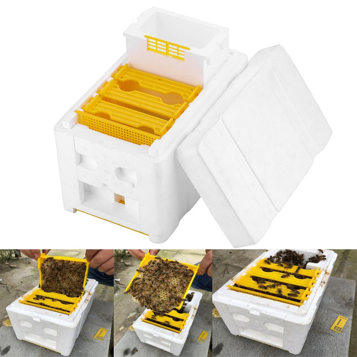 Harvest Bee Hive Beekeeping King Box Pollination Box Beekeeping Tool Perfect For Garden Pollination Flow Hive Beehive Frames