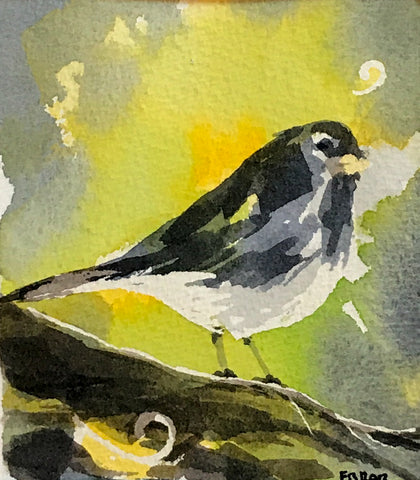 farrar brodhead ~ Birch Junco (sold)