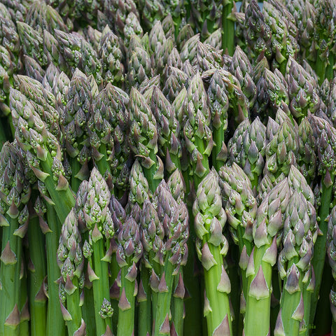 Asparagus at the Market