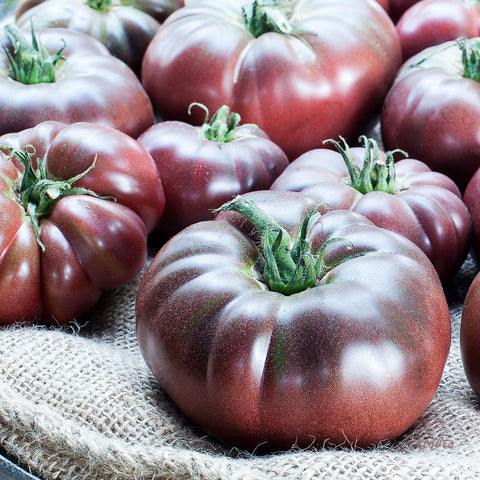 Dark Tomatoes at the Market