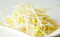 Bean Sprouts 250g
