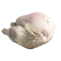 FROZEN WHOLE TURKEY 5.0-5.9KG