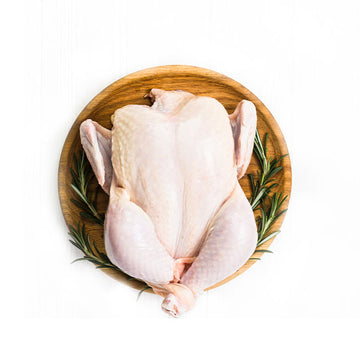 Whole Chicken Size 16 1pc/pk RSPCA