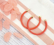 Load image into Gallery viewer, Coral Hoo Hoops