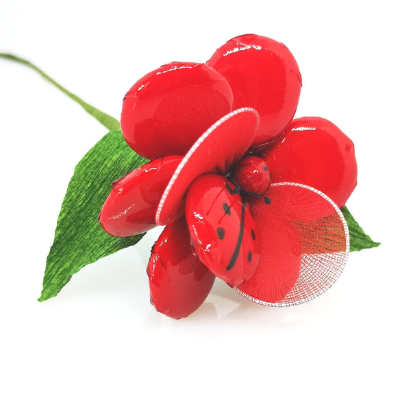 Anemone con Coccinella | Colori assortiti - I.R.C. William Di Carlo Srl
