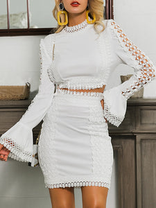 Cutout Guipure Lace Elegant Top with Skirt Set