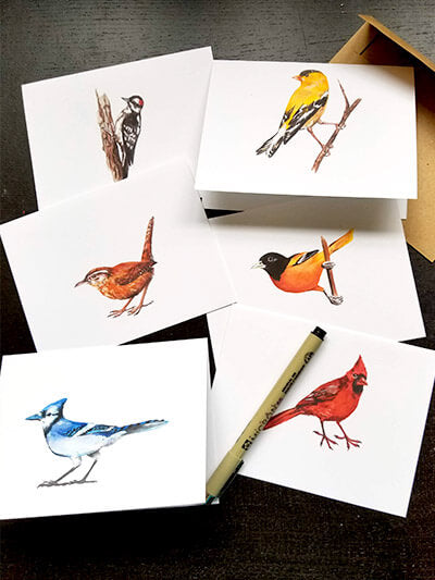 Bird Greeting Cards (Set of 6)