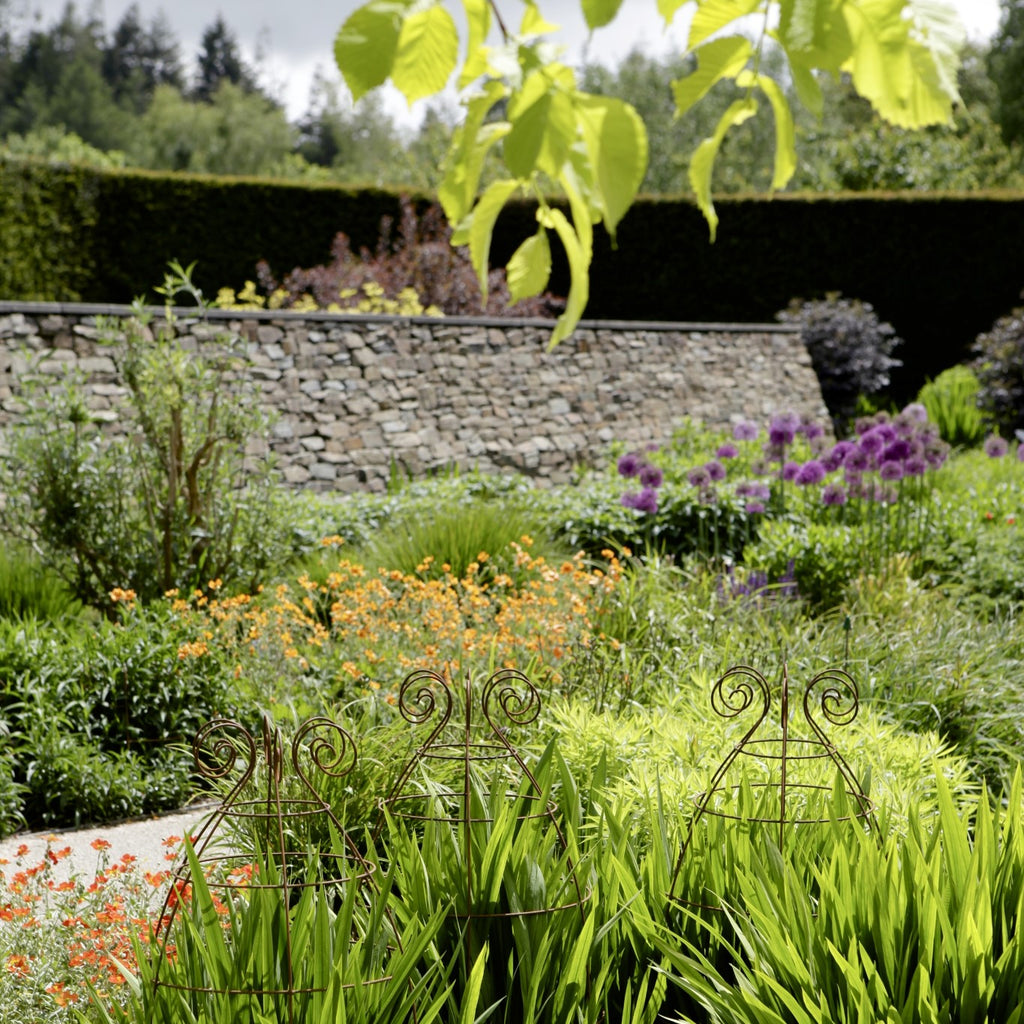 Plant supports at RHS Rosemoor gardens - Plant Belles