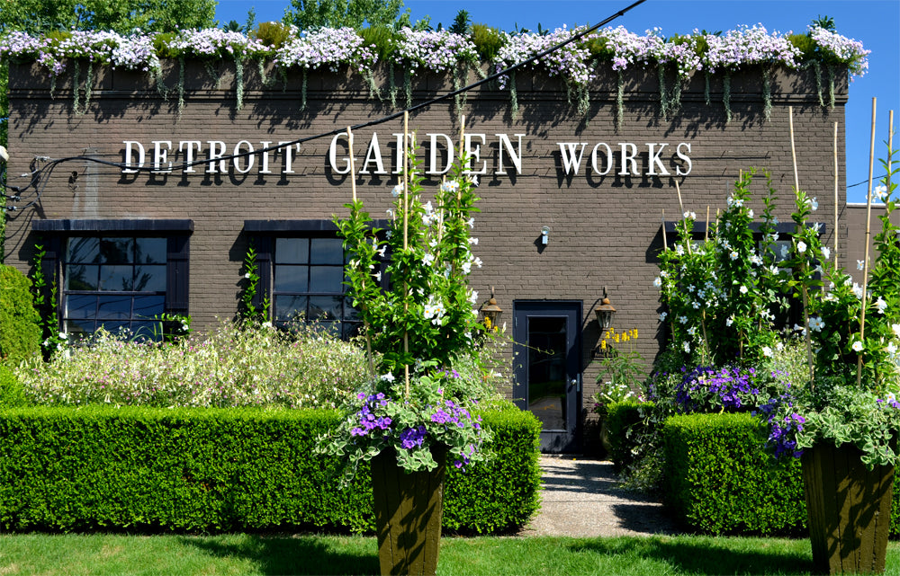 Plant Belles heading to America for Detroit Garden Works