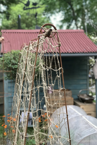 Bean Poles - Launched at RHS Chelsea. Create a frame to support a net, for climbing peas, beans...