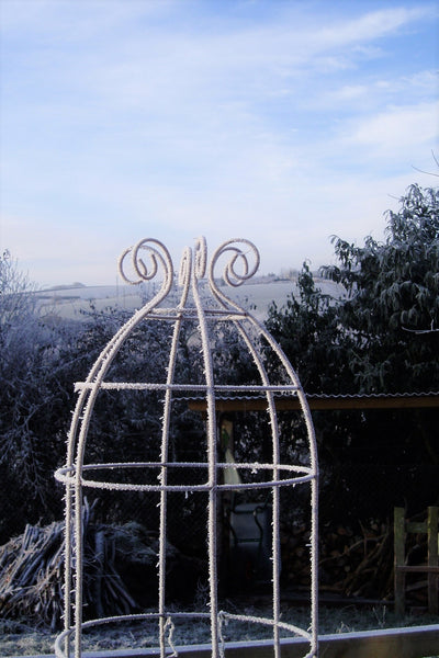 Tall obelisk climbing plant support. Rusty wire frame - Belle Tower. Great for sweet peas, Clematis and annual climbers