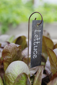 Plant Labels, slate labels hanging on mini crooks, rusty metal