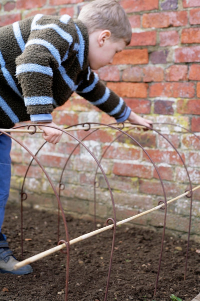 Protect your fruit & veg, plant tunnel, cloche hoops with loops for cane support, Enviromesh or net