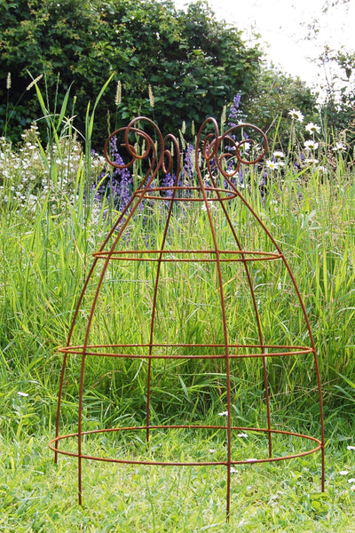 Grow through plant supports, rusty wire frames - Ernest Belle - Great for floppy herbaceous perennials like Peonies