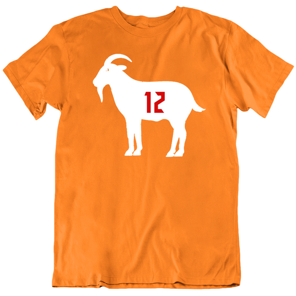 Tom Brady Goat 12 Tampa Bay Retro Football Fan T Shirt