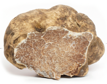 Load image into Gallery viewer, White Truffle (Tuber Magnatum Pico) 100g