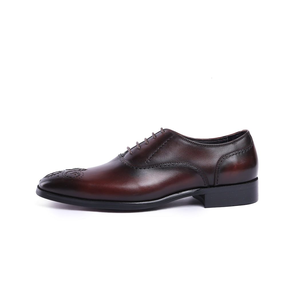 Oxford Medallion Tip - Black/Brown