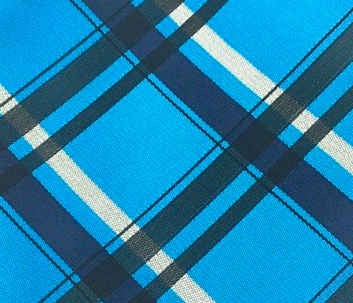 blue black check stripe swatch