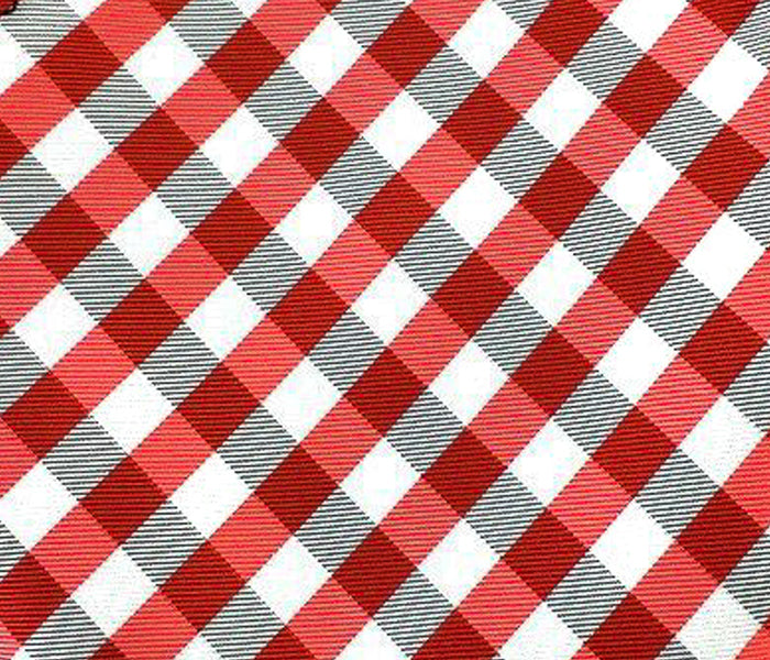 gingham red swatch