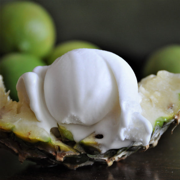 Tropical Coconut Ice Cream