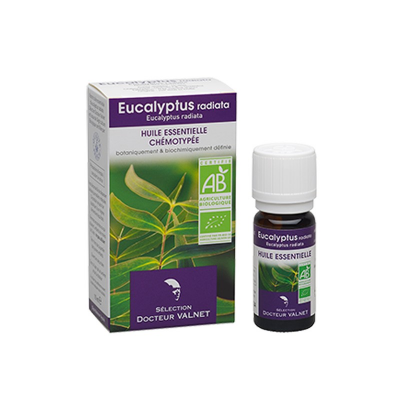 H.E EUCALYPTUS RADIATA 10ML