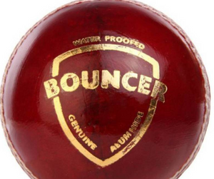 SG Bouncer Cricket Ball Red