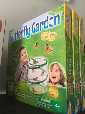 Butterfly Garden - First Class Learning Bradford