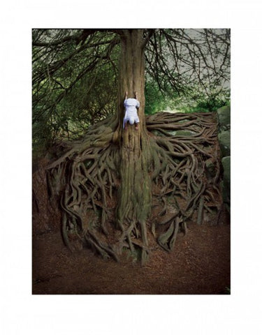 """The Widow"" - Mars Volta (Limited Edition Print Signed by Storm Thorgerson)"