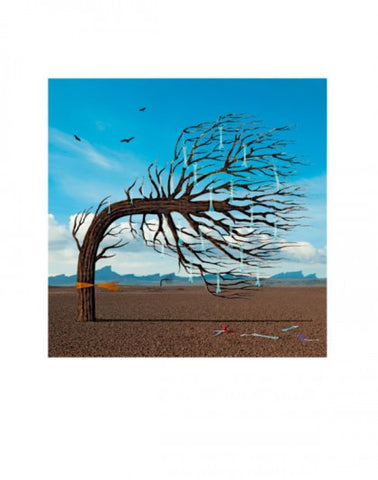 """Opposites"" by Biffy Clyro Limited Edition Signed Print"