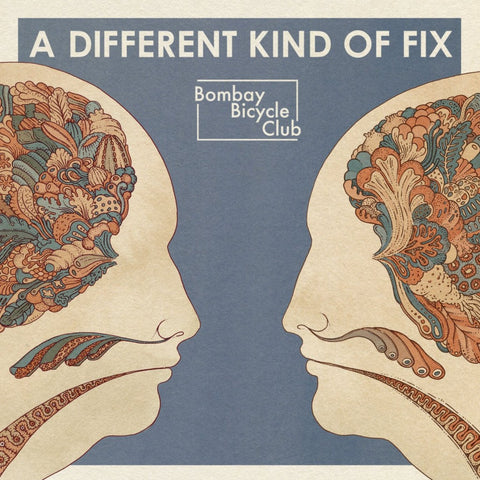 "Bombay Bicycle Club ‎– A Different Kind Of Fix (12"" Vinyl LP)"