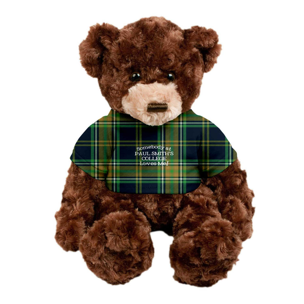 Teddy Bear, 14 inches, Brown with plaid shirt, Somebody at Paul Smith's College Loves Me!