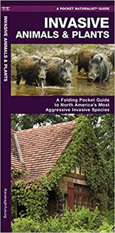 Pocket Naturalist Guide, Invasive Animals and Plants